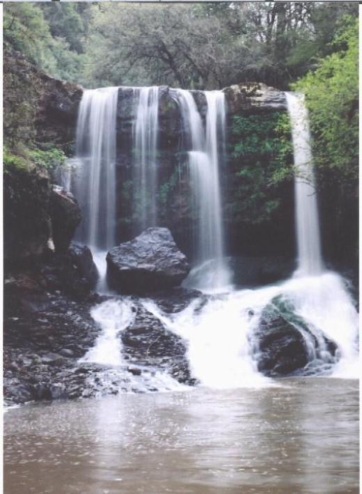 Toropi Rio Grande do Sul fonte: www.sistur.rs.gov.br